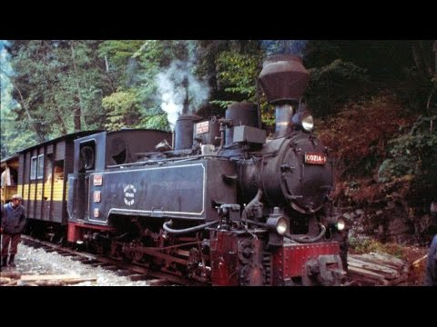 [DOKU HD] 360° Geo Reportage - Die Waldbahn der Karpaten